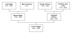 Leona Biggs Pedigree